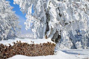 WC Box im Winter